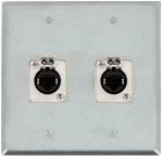 2 Port Double Gang Cat 5e Face Plate