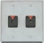 2 Port Double Gang 1/4 TRS Face Plate