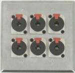 6 Port Double Gang 1/4 TRS Face Plate